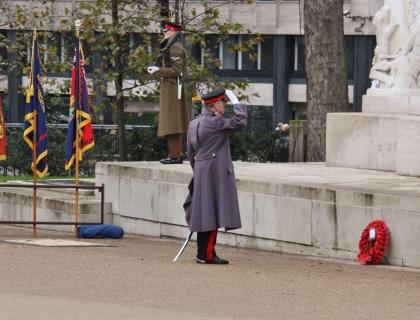 Royal Artillery Service of Remembrance Hyde Park 2014