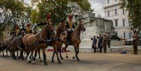 Kings Troop RHA taking the salute