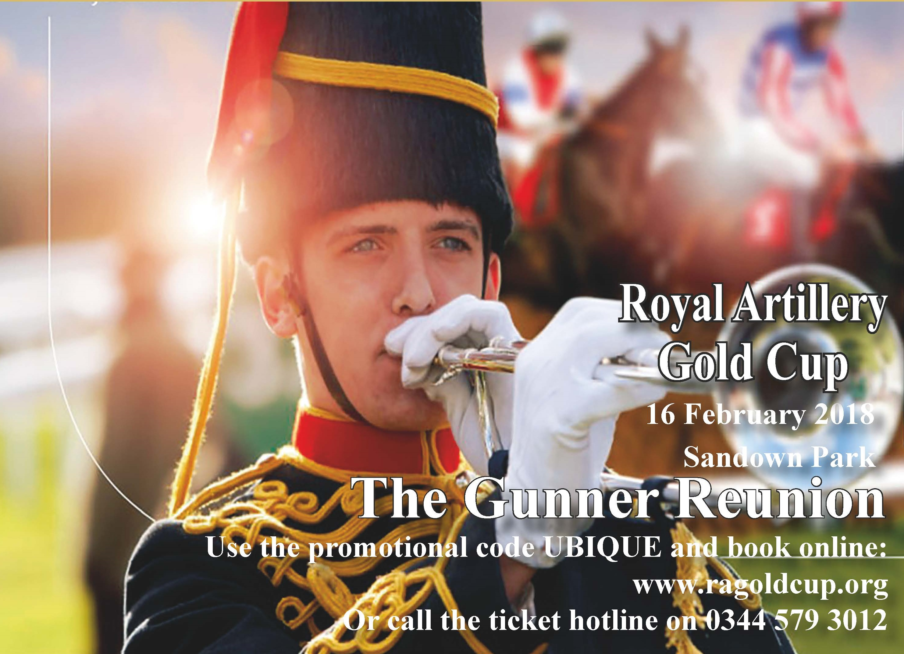 The Royal Artillery Gold Cup